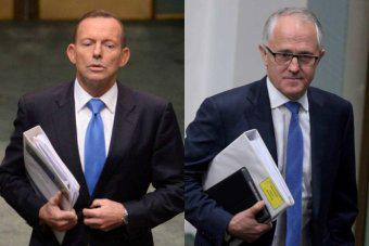Abbott-Turnbull